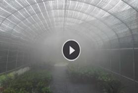 江西新余花卉大棚种植大棚喷雾降温工程