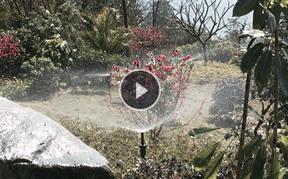 禅泉大酒店园林绿地喷淋喷灌系统