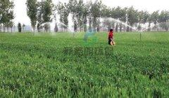 灌溉花草喷灌田地喷淋