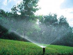 花草园林灌溉喷灌喷淋喷洒