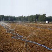 田地灌溉花草喷灌喷淋