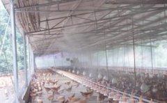 养殖场喷雾设备除臭剂如何才能更好的对症下药
