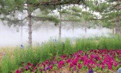人造雾厂家菲格朗景观造雾宛若仙境