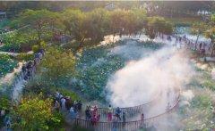 亚艺公园禅荷花岛人工造雾